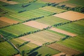 %CF%87%CF%89%CF%81%CE%B1%CF%86%CE%B9%CE%B1 - Πάνε Βουλή οι ανατροπές στο ασφαλιστικό των αγροτών